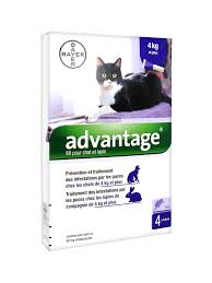 Advantage 80 chat/lapin (4-10Kg)