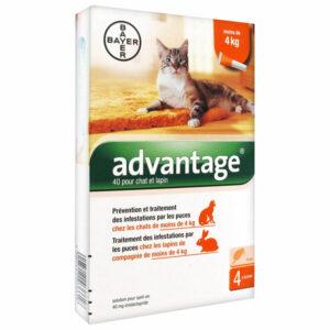 Advantage 40 chat/lapin (0-4Kg)