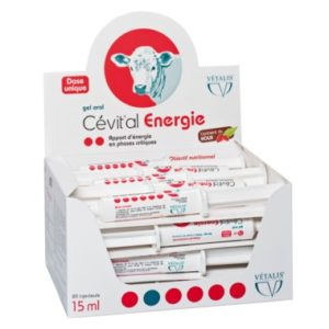 Cetival energie gel oral pour bovins