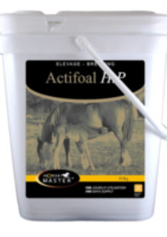 ACTIFOAL HP pour chevaux