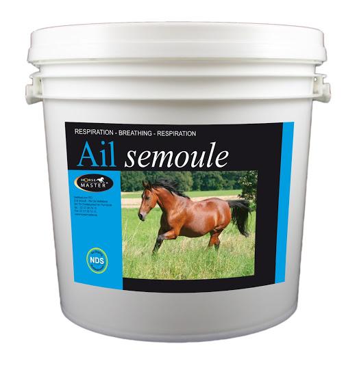 AIL SEMOULE par horse master (chevaux)