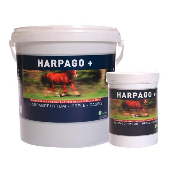 HARPAGO + pour les chevaux en bidon
