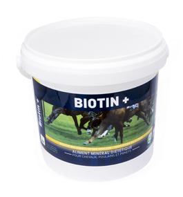 BIOTIN + pour chevaux