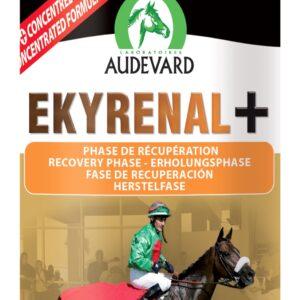 EKYRENAL PLUS récupération du cheval