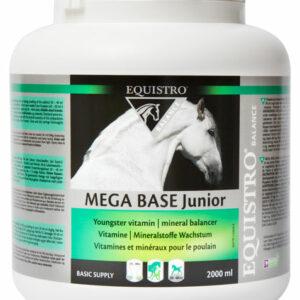 EQUISTRO MEGABASE JUNIOR jeune cheval