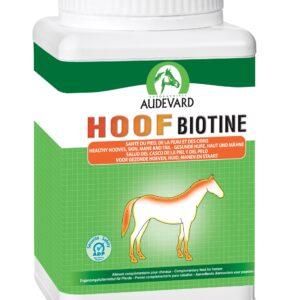 HOOF BIOTINE sante du piedde la peau et des crins du cheval