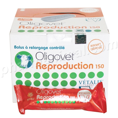 bolus oligovet reproduction vache